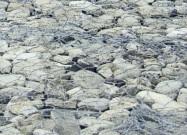 Détaille technique: PIETRA SERENA, calcaire naturel tombé italien