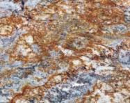 Détaille technique: GOLDEN TYPHOON, granit naturel brillant brésilien