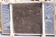 Fourniture dalles brillantes 2 cm en marbre naturel MARRON FOSSIL E-14694. Détail image photos
