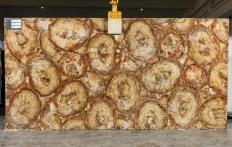 Fourniture dalles brillantes 2 cm en pierre semi précieuse naturelle PETRIFIED WOOD BROWN TL0142. Détail image photos