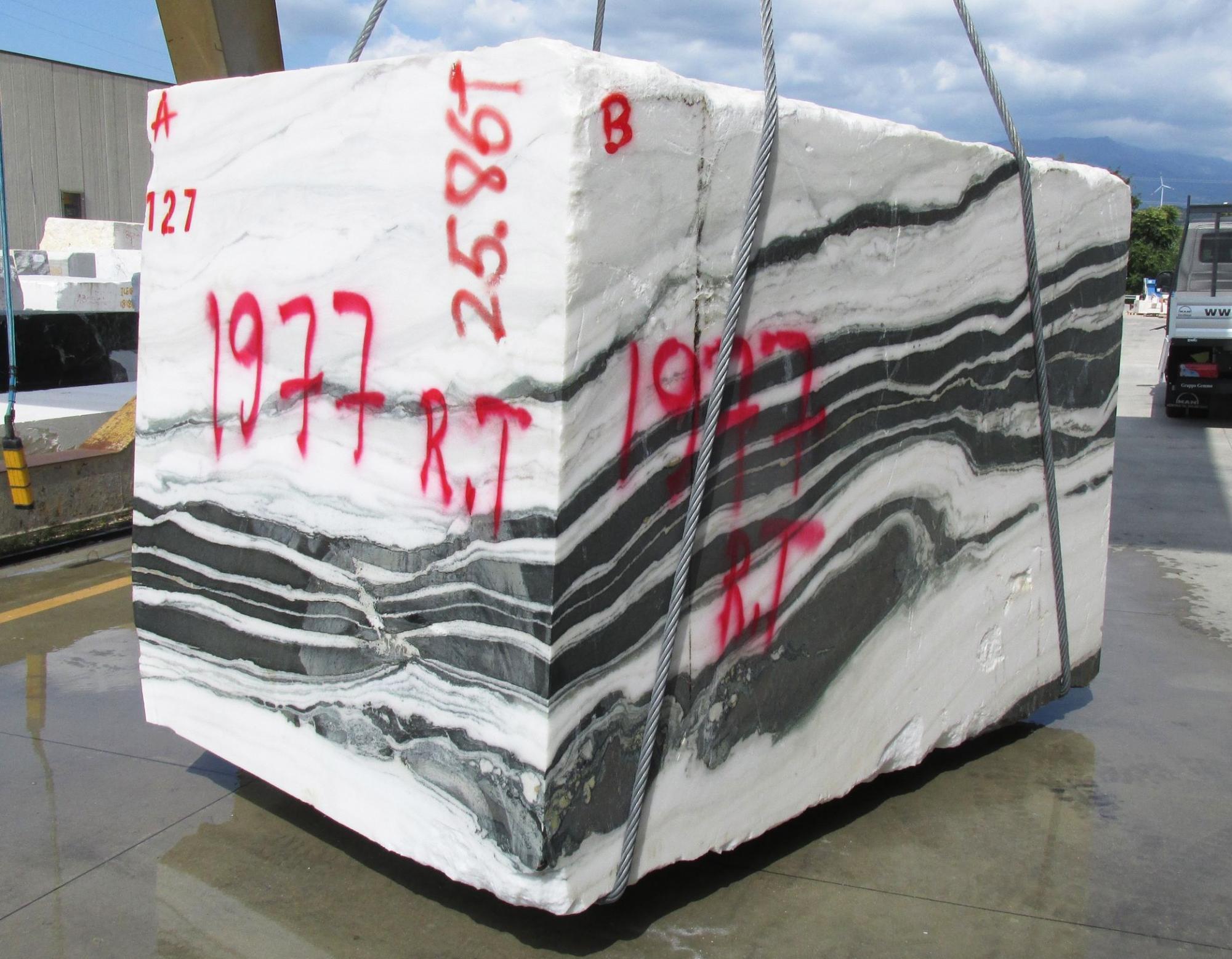 PANDA Fourniture Veneto (Italie) d' blocs bruts en marbre naturel 1771M , Face A