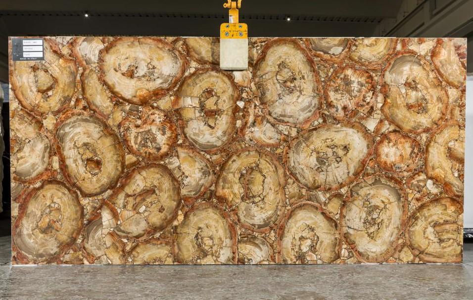 PETRIFIED WOOD BROWN Fourniture Veneto (Italie) d' dalles brillantes en pierre semi précieuse naturelle TL0142 , SL2CM