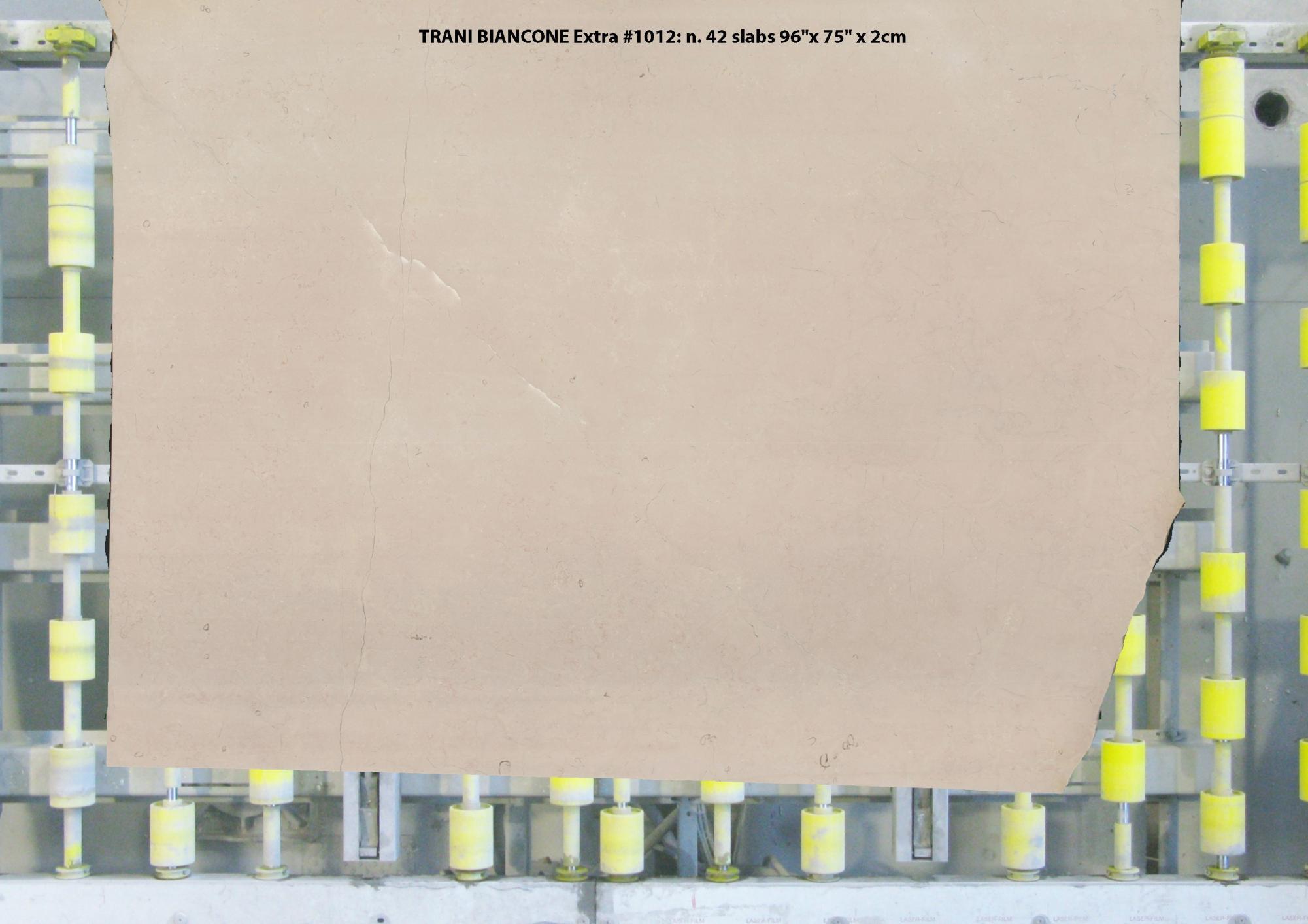 TRANI BIANCONE EXTRA Fourniture (Italie) d' dalles brillantes en marbre naturel 1012 , Slab #15