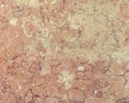 Détaille technique: GROLLA ROSATO, marbre naturel brillant italien
