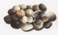 Détaille technique: MISTO GRIGIO, marbre naturel tombé italien