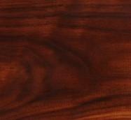 Détaille technique: Juglans nigra, noyer massif brillant américain