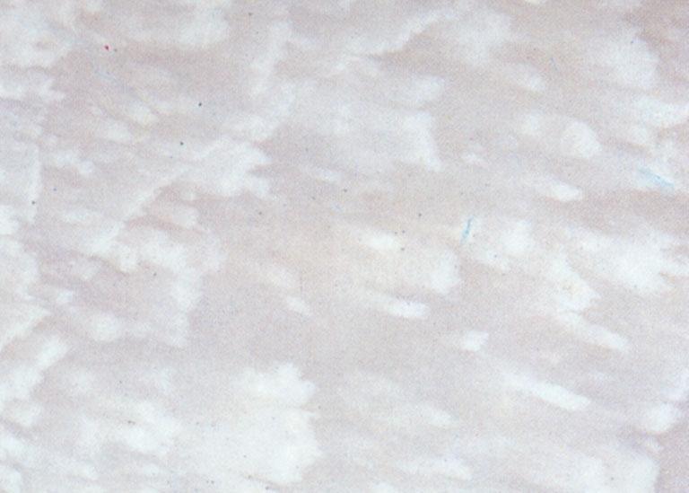 Détaille technique: SAN MARINA CLOUDY, marbre naturel brillant grec