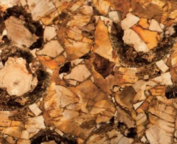 Détaille technique: PETRIFIED WOOD, pierre semi précieuse naturelle brillante de la Namibie